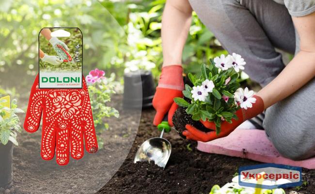 Купить перчатки Doloni 622