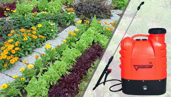 Купить недорогой аккумуляторный опрыскиватель для огорода или дачи Forte CL-16A