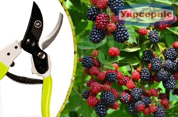 Купить недорого ручной секатор для дачи My Garden X-gen 223-1-210