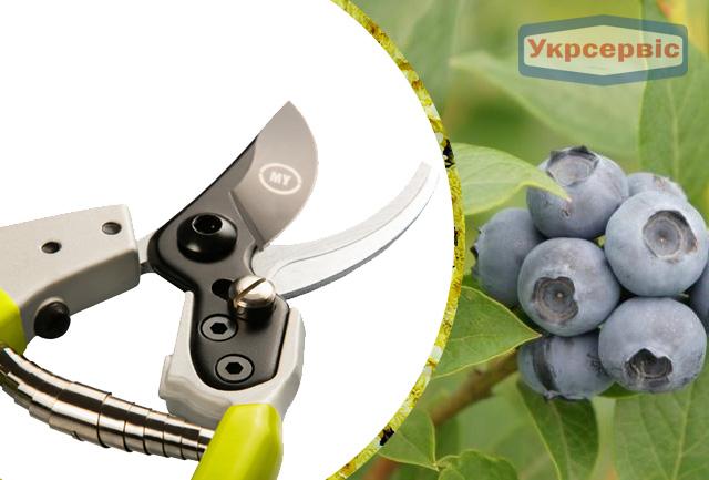 Купить недорогой секатор для обрезки растений My Garden X-gen 223-1-210