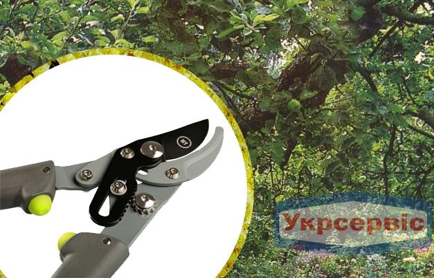 Купить недорого ручной сучкорез для дачи My Garden 232-1-470