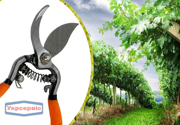 Купить недорогой секатор для обрезки растений Truper T-66