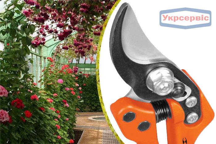 Купить недорогой секатор для обрезки растений Truper T-68
