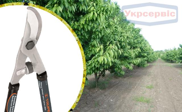 Купить недорогой сучкорез для сада Truper TB-122