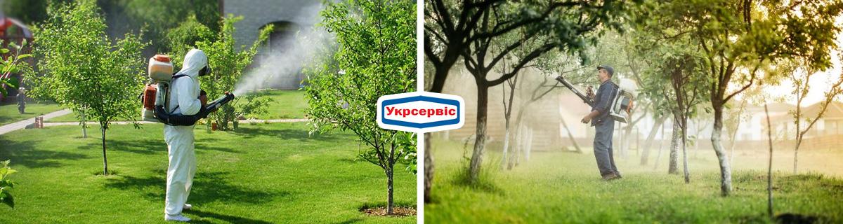 Как ухаживать за плодовыми деревьями – борьба с вредителями
