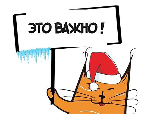 График работы интернет магазина на Новогодние праздники