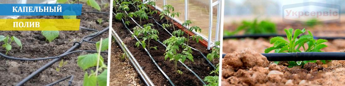 Купить недорого капельный полив для сада