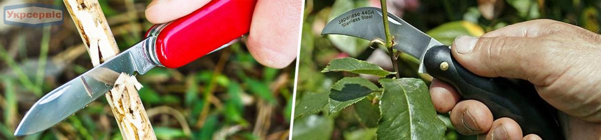 Сколько стоит садовый нож