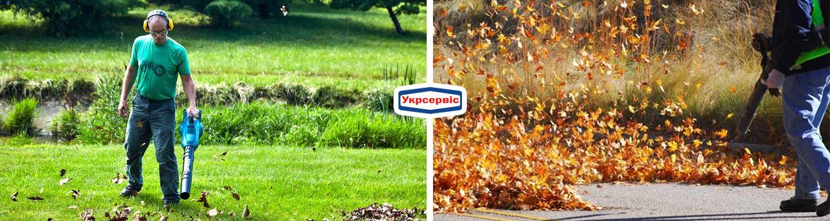 Купить садовый пылесос для уборки листьев