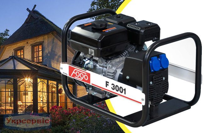 Купить недорого бензиновый генератор FOGO F 3001