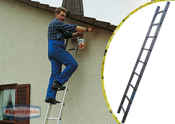Купить недорого приставную лестницу для дачи Elkop VHR Hobby 1x9