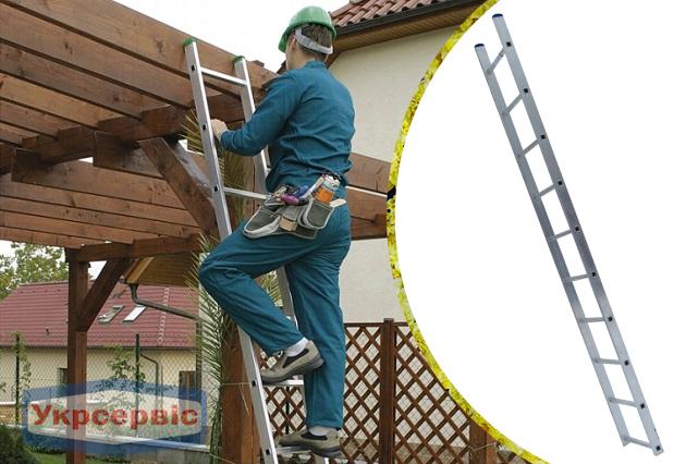 Купить недорого приставную лестницу для дачи Elkop VHR Hobby 1x10