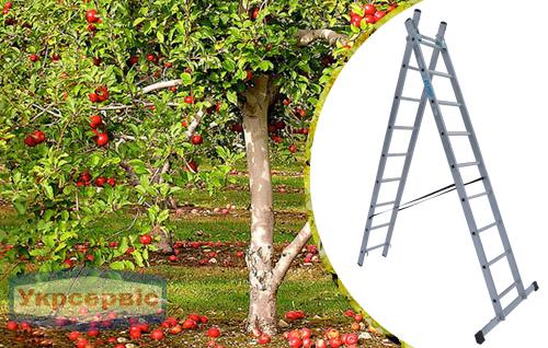Купить недорого лестницу для дома Elkop VHR Trend 2x9