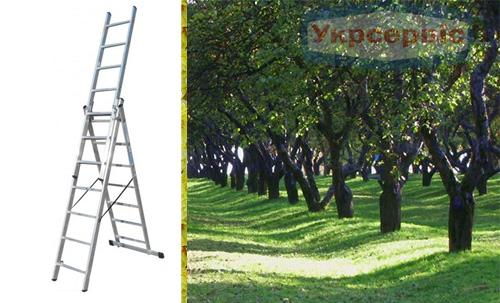 Купить недорого лестницу для дома Elkop VHR Trend 3x7