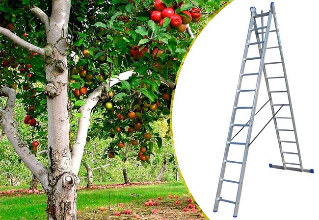 Купить недорого лестницу для дома Elkop VHR Hobby 2x12